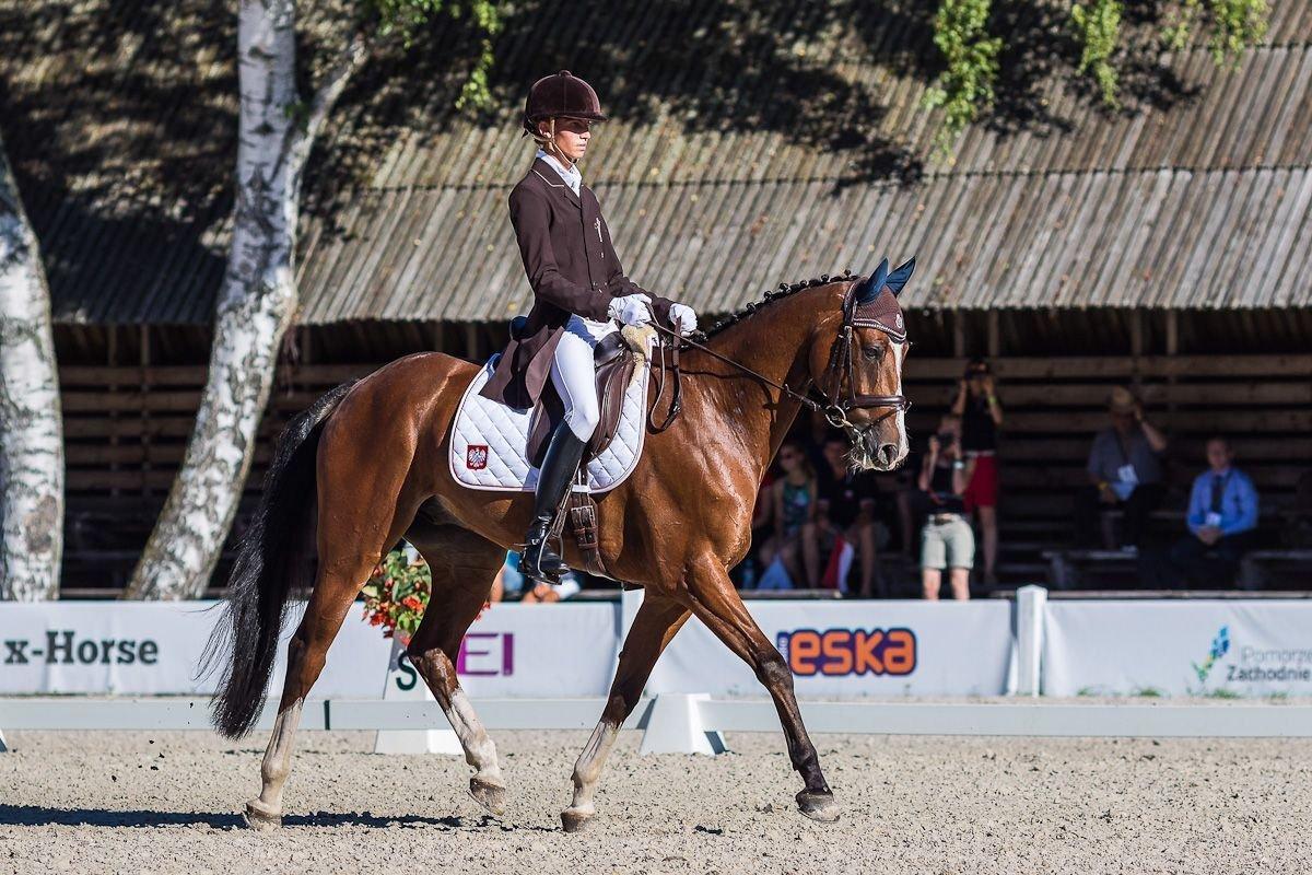 Marcel Dul Mistrzostwa Europy Juniorów w Białym Borze 2015 Zdjęcie z próby Ujeżdżenia