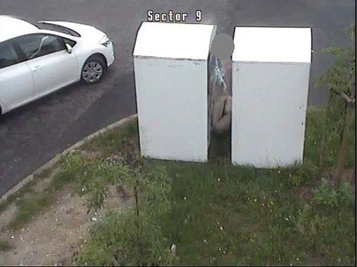 Wyrzuciła stary kojec na trawnik, dostała 200-zł mandat