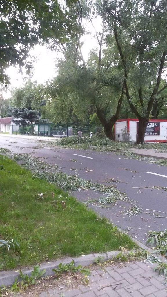 Wichura nad Bolesławcem