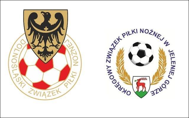 Logo DZPN i OZPN