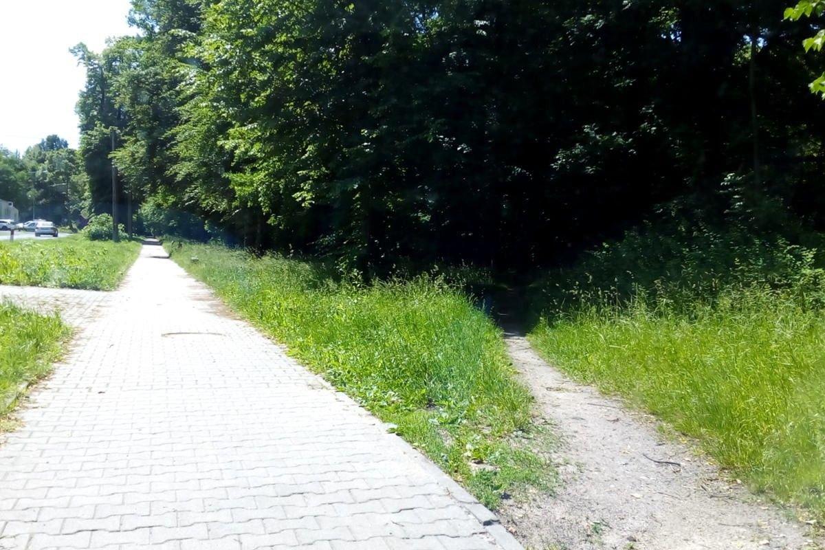 Las i chodnik przy ulicy Jeleniogórskiej