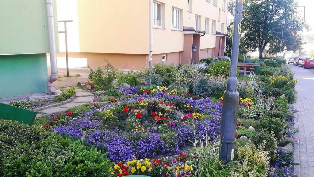 """Znamy laureatów tegorocznego konkursu """"Bolesławiec w kwiatach"""""""