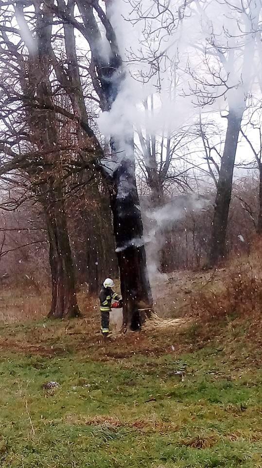 """""""Przyczyna pożaru wydaje się oczywista..."""""""