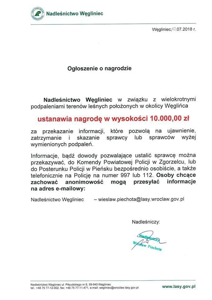 10 000 zł nagrody za pomoc w ustaleniu sprawcy podpaleń lasu
