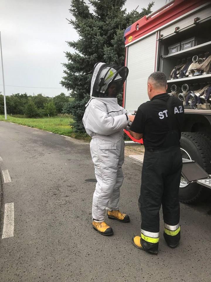 """OSP Raciborowice: Akcja """"Gniazdo os i szerszeni w Iwinach"""""""