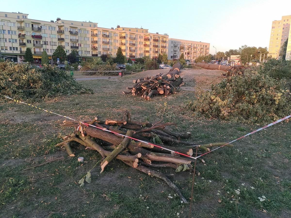 Wycięli 19 drzew na Popiełuszki. Rusza budowa hotelu z-index: 0