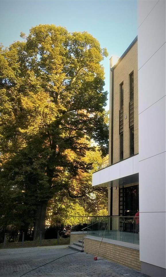 Centrum Wiedzy w Bolesławcu z-index: 0