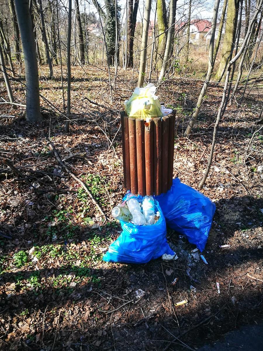 Harcerze posprzątali w lasku przy Jeleniogórskiej