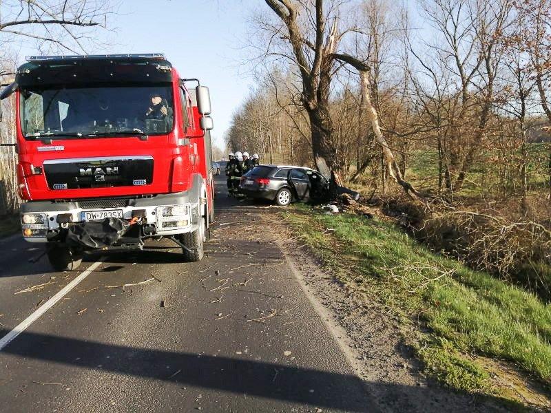Śmiertelny wypadek na drodze wojewódzkiej z-index: 0