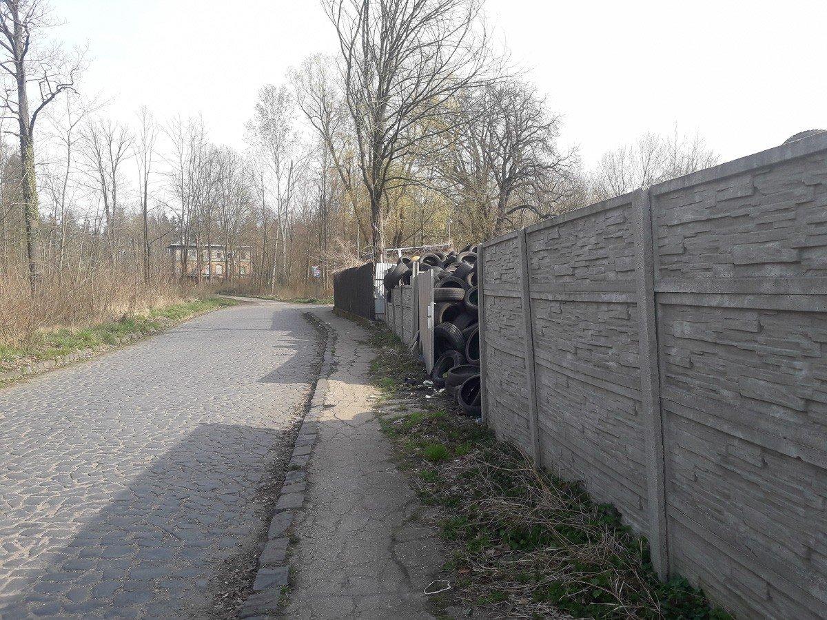 Chodnik w Zebrzydowej Stacyjnej (zdjęcie z 3 kwietnia)