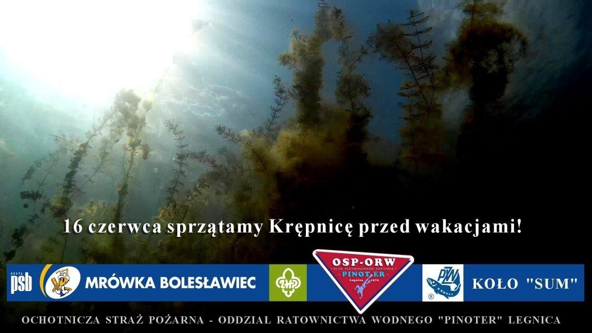 Plakat akcji Sprzątanie Krępnicy