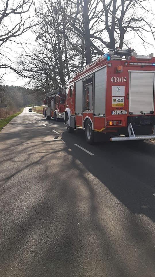 Akcja strażaków koło Zabłocia (gmina Nowogrodziec, powiat bolesławiecki)