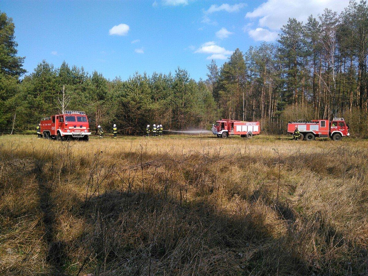 Akcja straży koło miejscowości Motyle (gmina Gromadka, powiat bolesławiecki)