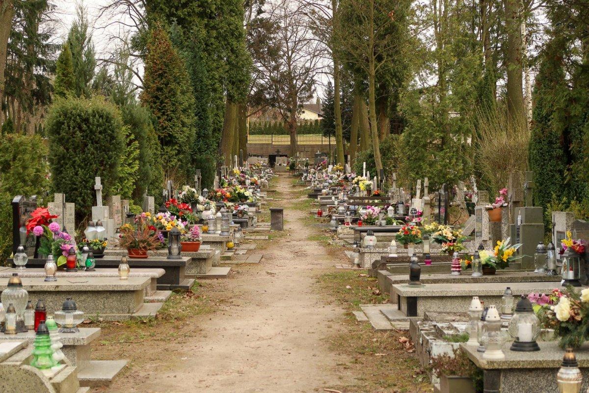Cmentarz komunalny w Bolesławcu