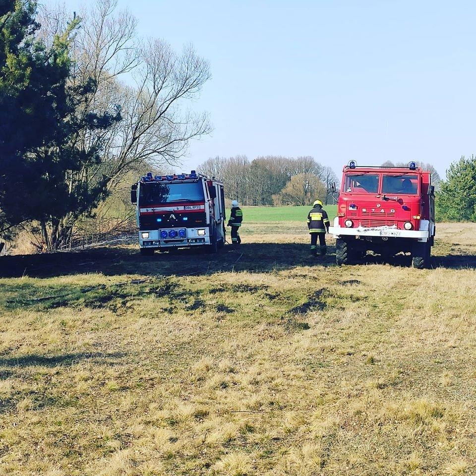 Akcja straży pożarnej przy A4 (na wysokości Kierżna, gmina Nowogrodziec, powiat bolesławiecki)