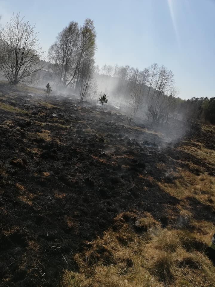 Akcja straży w Tomisławiu (gmina Osiecznica)