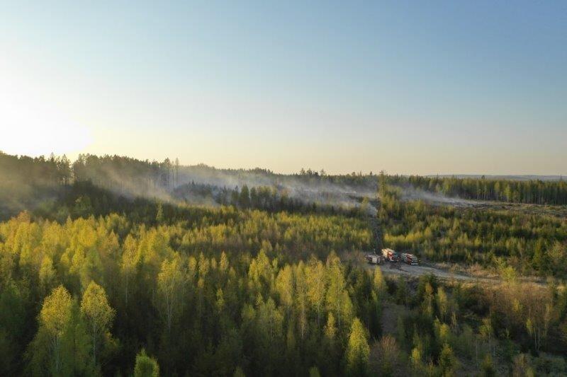 Pożary lasów w powiecie bolesławieckim