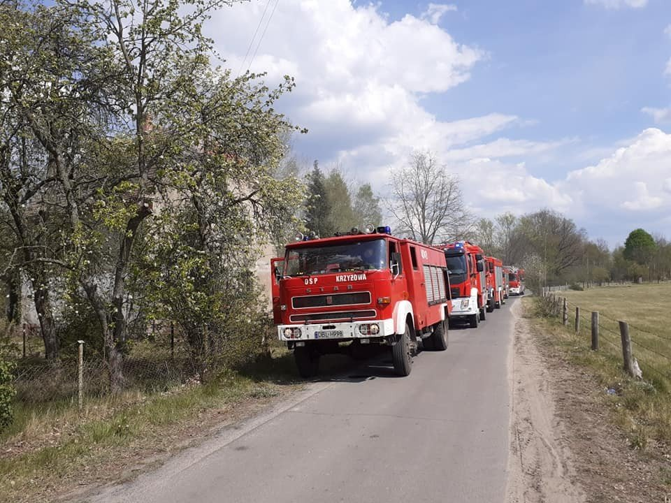 Akcja straży pożarnej w Borówkach (gmina Gromadka, powiat bolesławiecki)