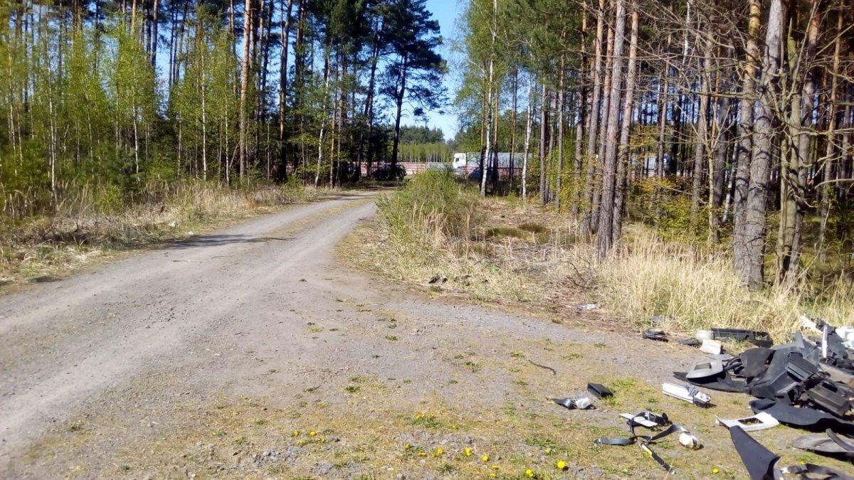 Śmieci w lesie koło Krępnicy