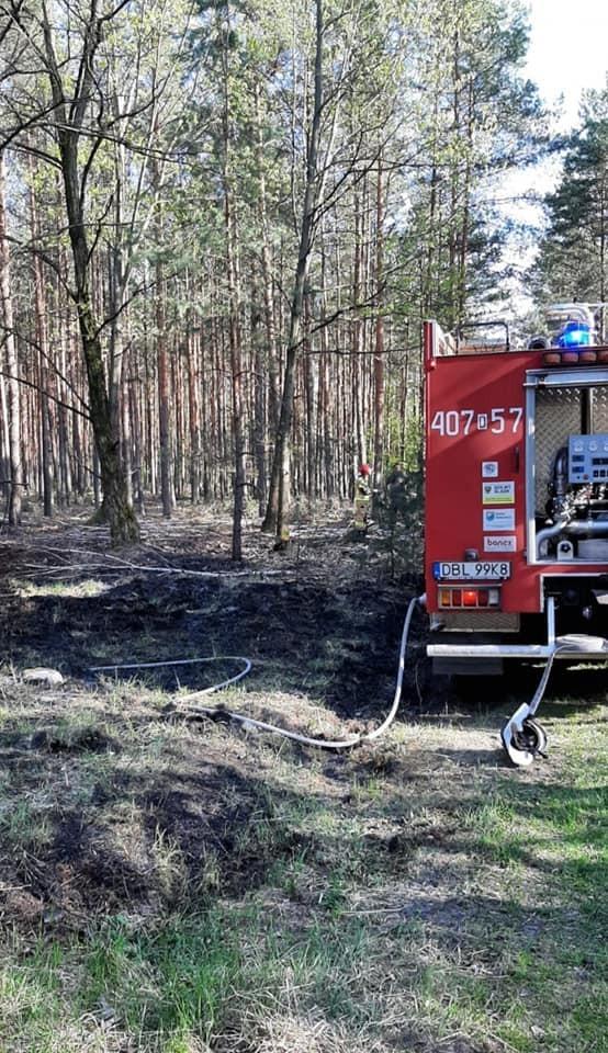 Akcja straży pożarnej koło Świętoszowa (gmina Osiecznica, powiat bolesławiecki)