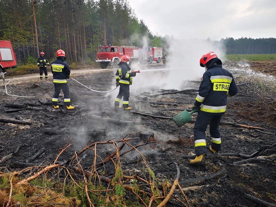 Akcja straży pożarnej w miejscowości Krzyżowa (gmina Gromadka, powiat bolesławiecki)