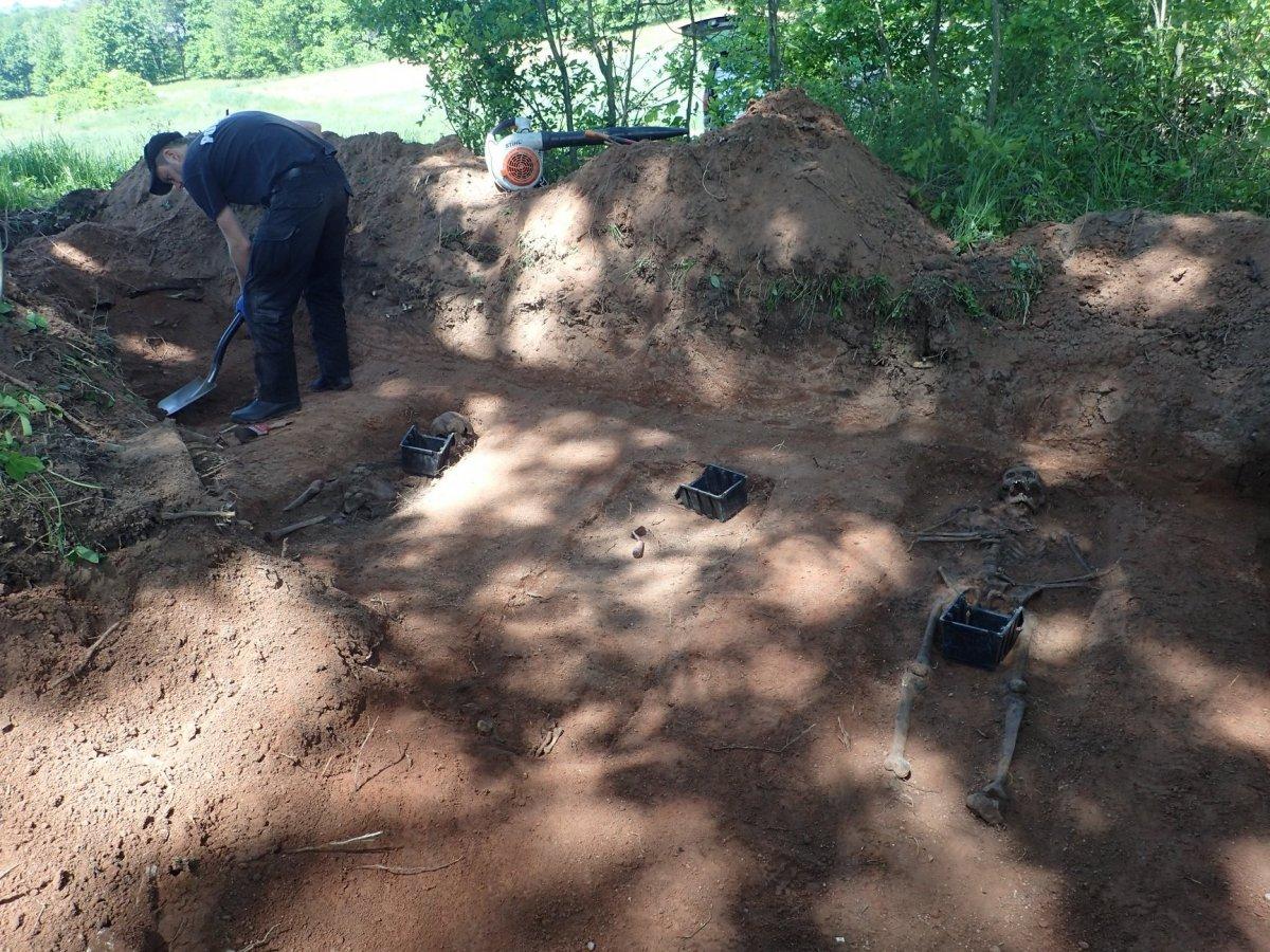 Prace ekshumacyjne prowadzone przez poznańskie stowarzyszenie Pomost w okolicach Gościszowa (gmina Nowogrodziec, powiat bolesławiecki)