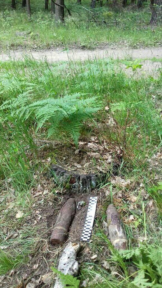 Pociski znalezione w lesie w powiecie zgorzeleckim