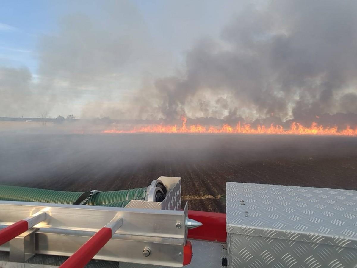 Pożary pól w Tomaszowie Bolesławieckim i Chościszowicach