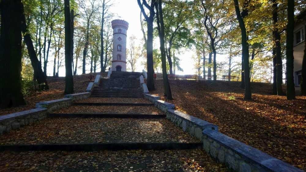Wieża widokowa w Nowogrodźcu (powiat bolesławiecki)