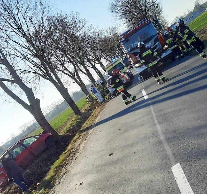 Auto uderzyło w drzewo koło Kraśnika Dolnego
