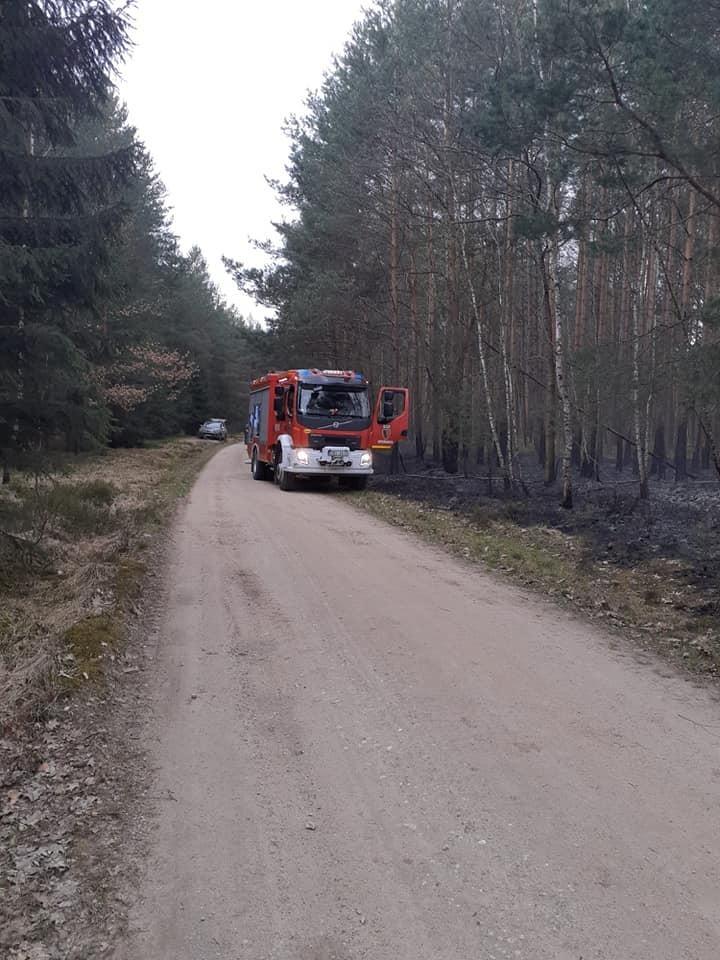 Pożar w lesie koło Wierzbowej