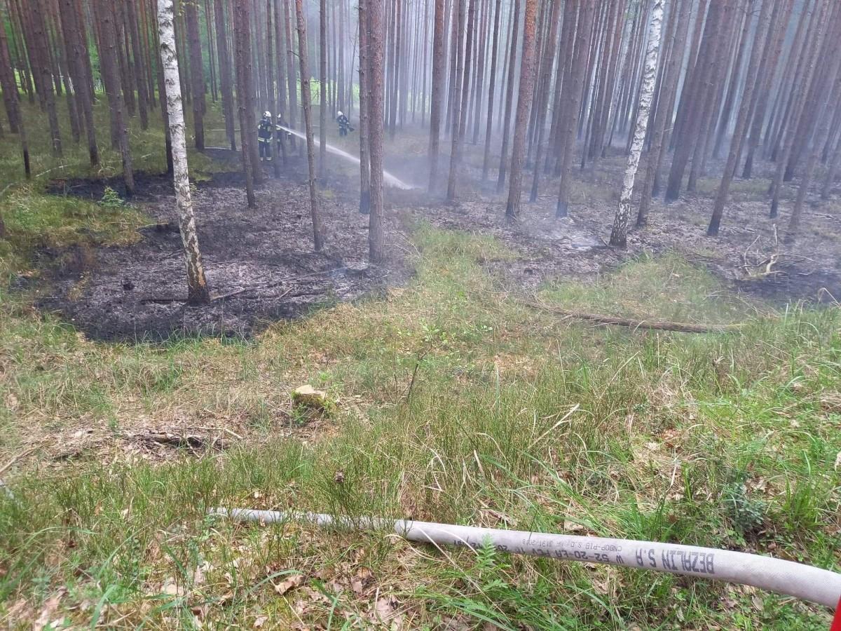 Działania strażaków z OSP Stary Węgliniec