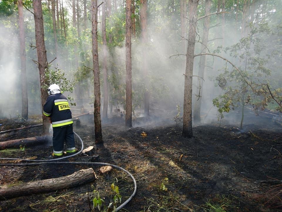 Akcja straży pożarnej w Osłej