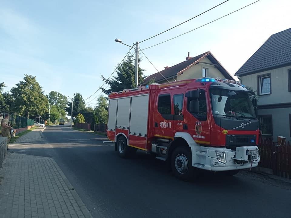 Działania strażaków z OSP Gromadka