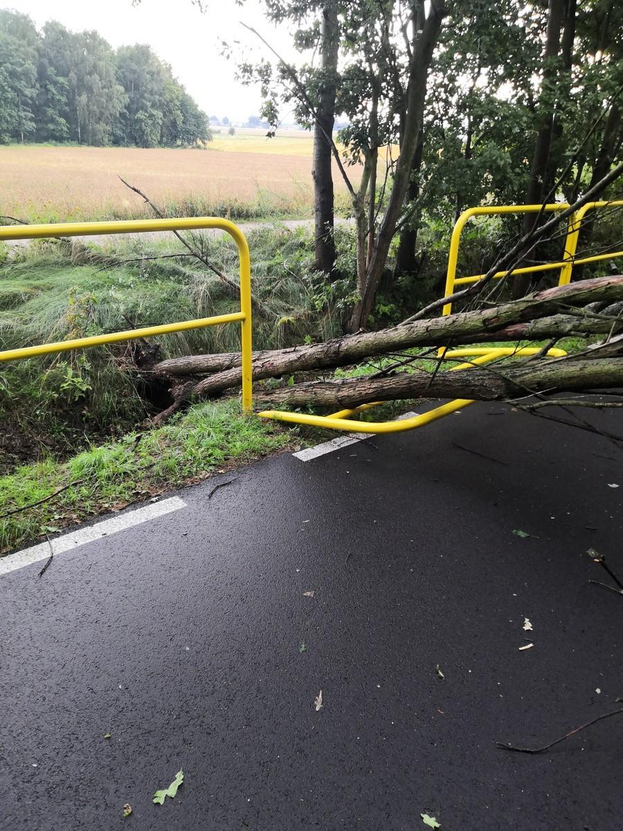 Drzewo zdemolowało barierkę